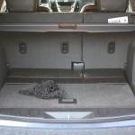 2011 Chevrolet Equinox rear cargo